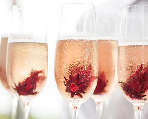 Champagne with hibiscus flowers
